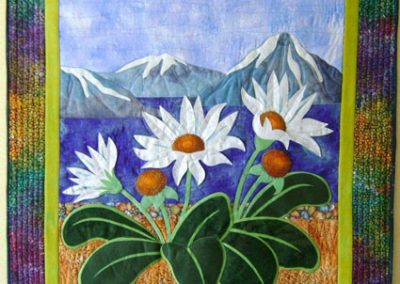 mountaindaisies